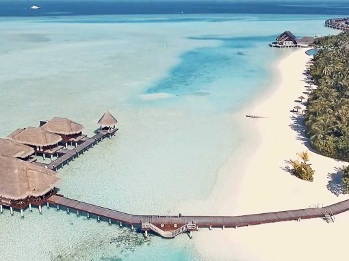 Maldives – Palm-fringed Paradise